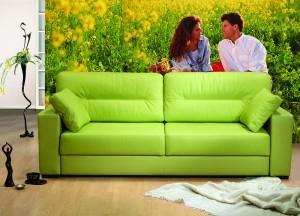 диваны фото,диваны недорого,мягкие диваны.диваны дешево,цвет диванов, сделать диван самостоятельно