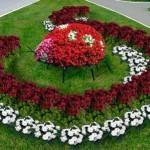 клумбы,клумбы фото,клумбы цветов,клумбы +своими руками,клумбы +и цветники,озеленение,альпийская горка,ландшафтный дизайн,газон,садоводство,цветники,цветники +своими руками,+ flower with their hands,bed,flower,Landscaping