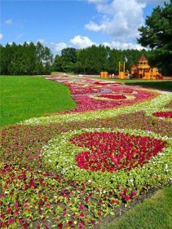 Клумбы с многолетними цветами  фото 101