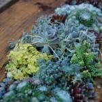 поделки для дачи,стол,кровать,вазоны,цветники,клумбы