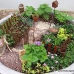 вазоны, цветы, горшки, альпийская горка, бансай