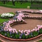 Виды цветников.КЛУМБА, ЦВЕТНИКИ, миксбордер, партер,бордюр,