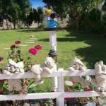 поделки +для дачи+своими руками+фото,деревянные поделки,природные поделки,поделки +из материала +своими руками,поделки +для сада,поделки +для детского сада,поделки +из пластиков бутылок,картинки поделки