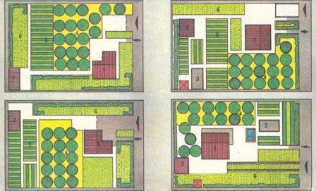 план огорода,план сада,как распланировать участок,огород,